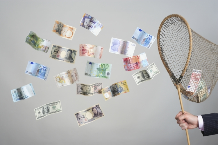 Net Trying to Catch Cash