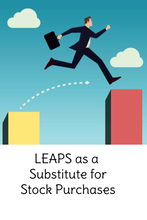 LEAPS as a Substitute for Stocks