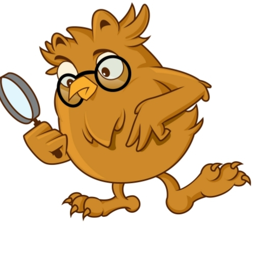 Owl Searching with Magnifying Glass