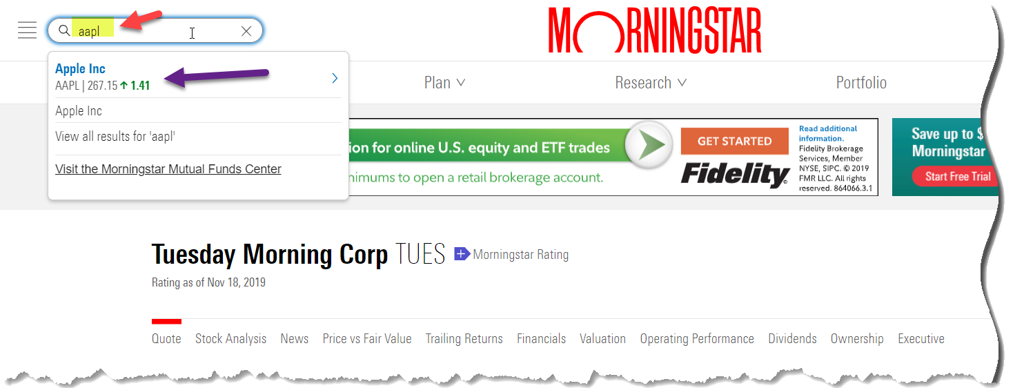 Main Screen of Morningstar to Enter Apple Stock
